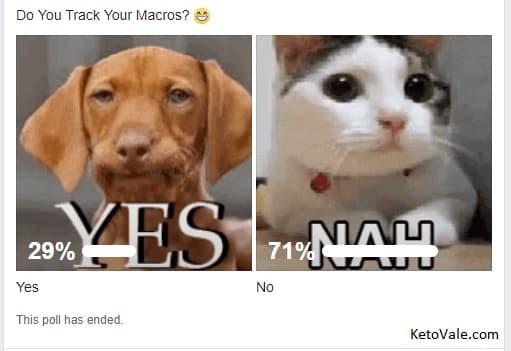 macros poll