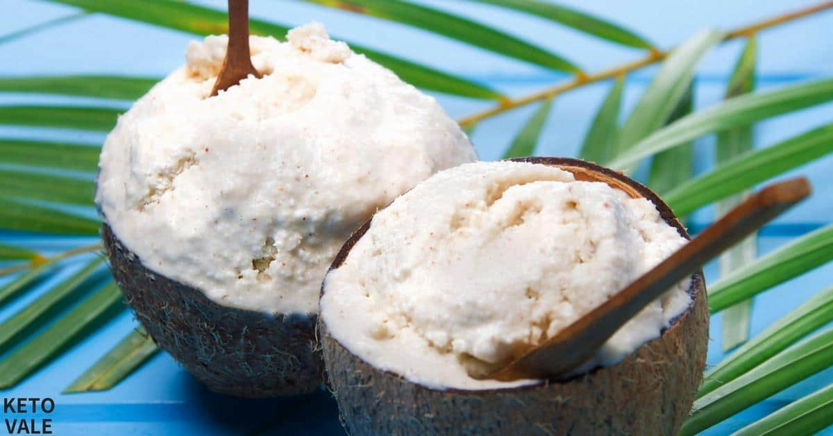 Sugar Free Coconut Ice Cream