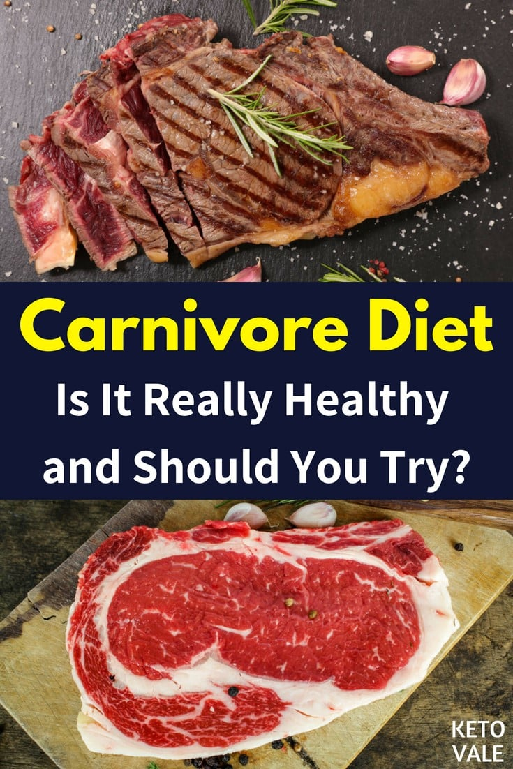 The Carnivore Diet: Should You Try It?