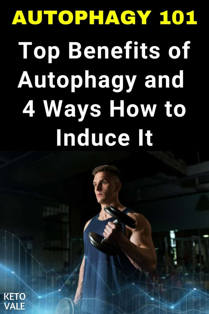 How to induce autophagy