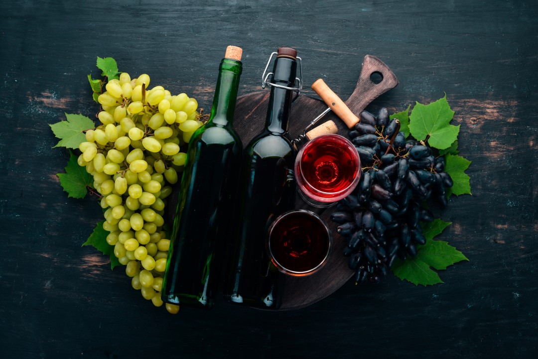 low carb wines