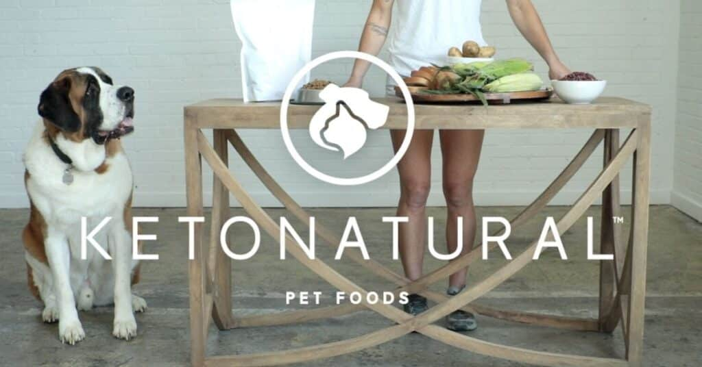 ketona dog food review